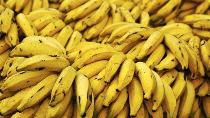 Banány v Jižní Americe