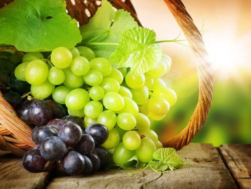 Hroznové víno - velmi zdravé ovoce, které patří mezi nejčastěji pěstované ovoce světa