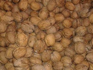 Netradiční využití vlašských ořechů - máslo, omáčky anebo výroba přírodní barvy na vlasy