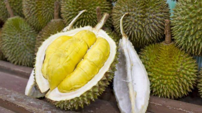 Durian: velmi zdravé ovoce, jehož zápach ale snese málokdo