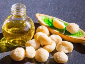Makadamové ořechy: elixír zdraví z Austrálie, jež může stát přes 1 000 Kč za kg