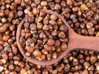 "Guinejský pepř: ""rajské zrno"" pro nezvykle peprnou chuť jídel"