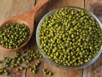 Fazole mungo: luštěnina, jež může pomoci trávení i hubnutí