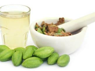 """Haritaki: plody """"zbavující všech nemocí"""""""