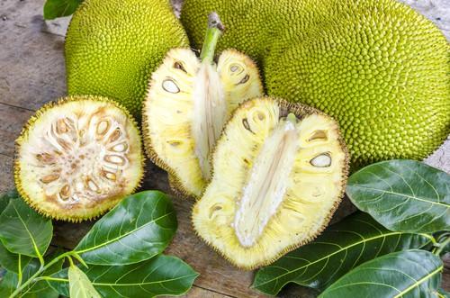 """Žakie (jackfruit): zdravé ovoce, kterému se říká i """"veganské vepřové"""""""