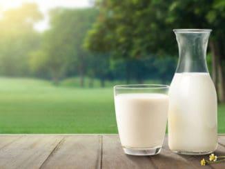 Překvapivé způsoby, jak využít mléko na zahradě