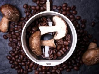 Co je houbová káva a k čemu je dobrá?